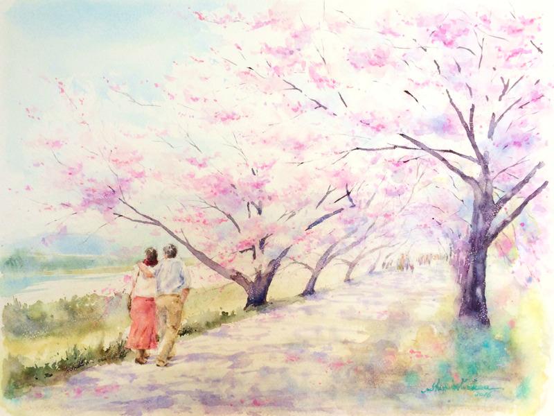 透明水彩画「桜の頃(八幡市 背割提)」