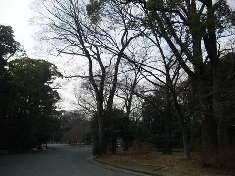 2011-02-07 11-03-53