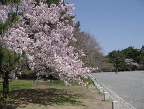 2011-04-12 11-04-01