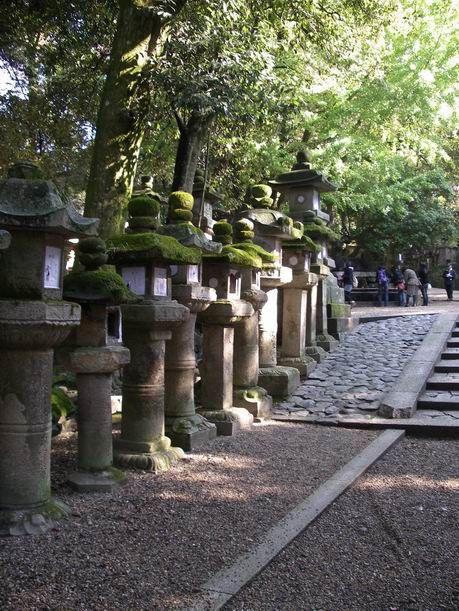 奈良は 「東大寺」&「春日大社」に行って来ました。「奈良公園」の鹿にもお尻噛まれてきました。
