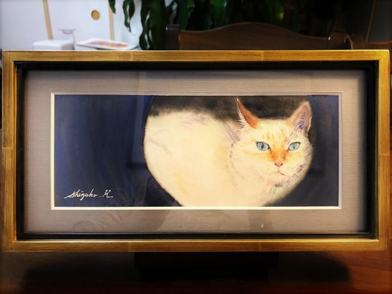 透明水彩画「Cat in hiding」
