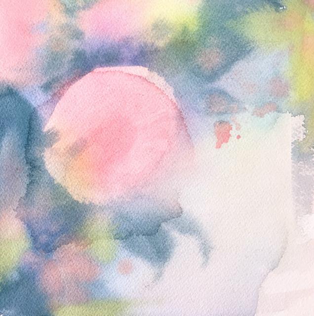 2020.01.26透明水彩画「昨日のこと(八重の椿)」途中 (2)