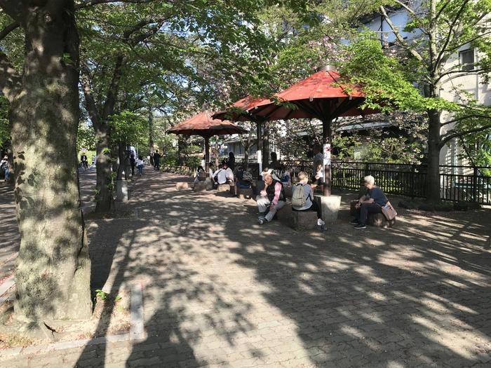 秋に京都・祇園で「第4回黒川しづこ透明水彩画展」を計画中どす(*^-^*)