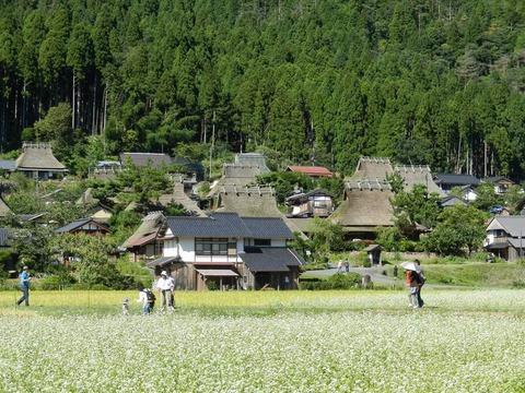 """京都府南丹市 """"美山かやぶきの里"""" へ取材に行きました♪"""