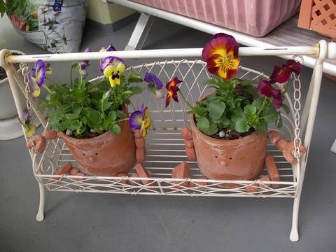 過去の趣味は家庭菜園♪ 写真満載でお送りします。