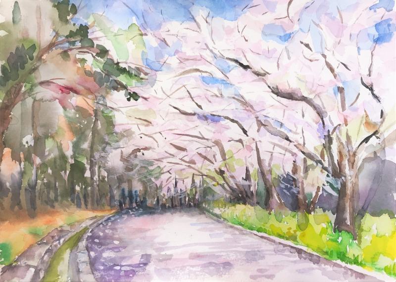 桜スケッチ会の作品&アート情報🎨