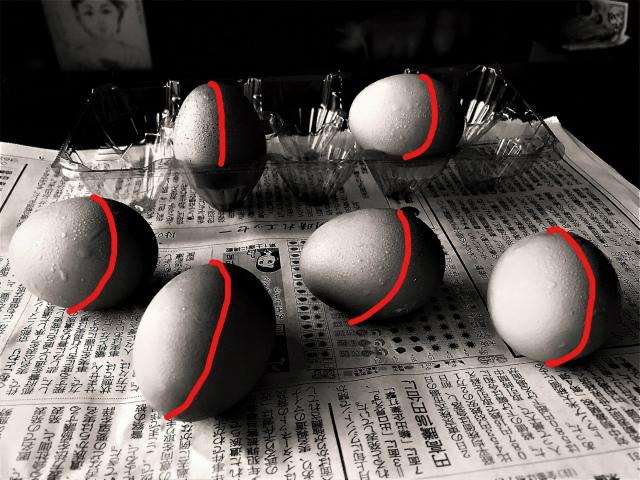 自然光稜線卵 (3)