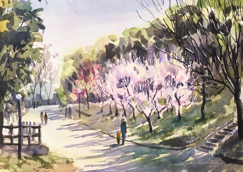 透明水彩スケッチ「豊後梅の咲く散歩道」~イキナリ春真っ盛り🌸~