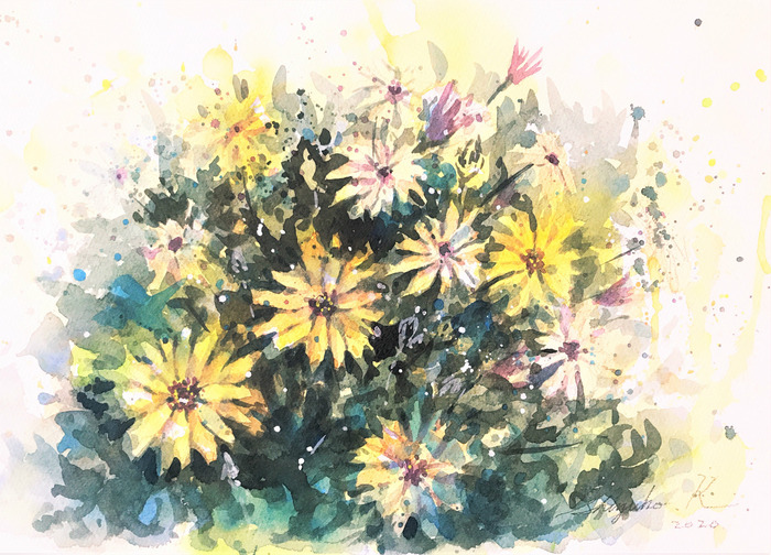 【動画】STAY HOME SKETCH ベランダでお花を描く2