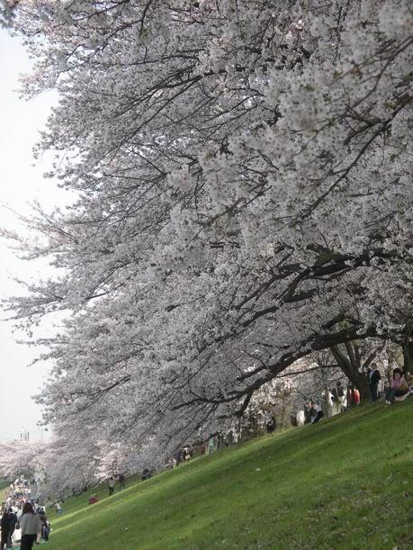 2011-04-10 16-25-56