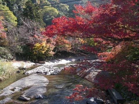 京都~♪大原「三千院」♪ に行って来ました♪
