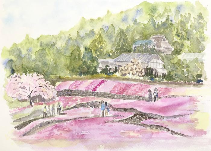 Hさんお花畑の透明水彩画&明るさを描くには周囲の暗さに頼る