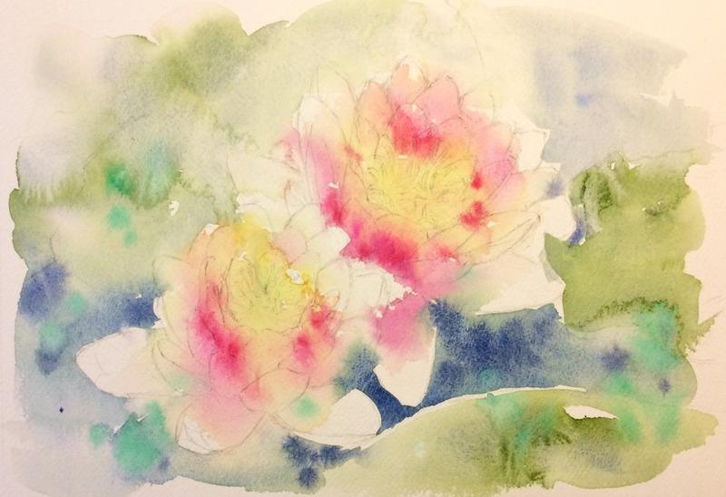 13透明水彩画「大阪の風景(堺市浜寺公園の蓮)」2