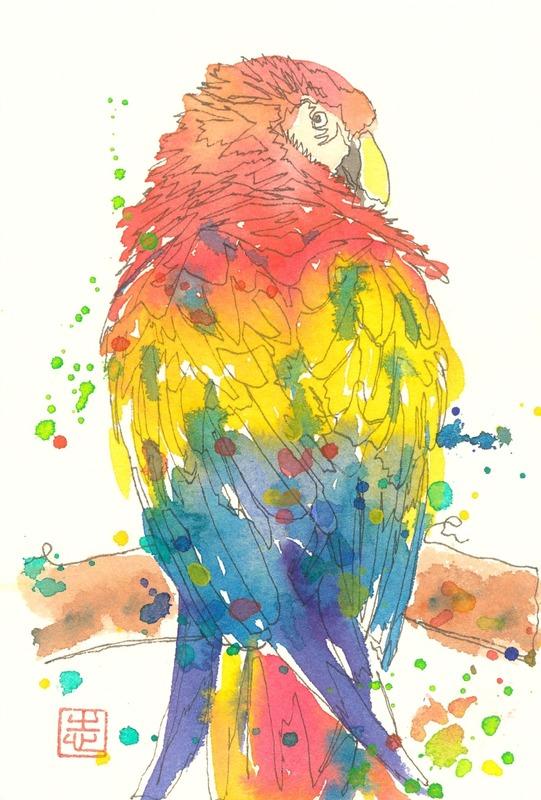 透明水彩一本線スケッチ「オウム」&アートエッセイ「『絵画』と『イラスト』って」