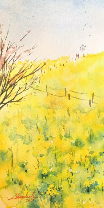 20200131透明水彩画「yellow magic」ナノハナ完成