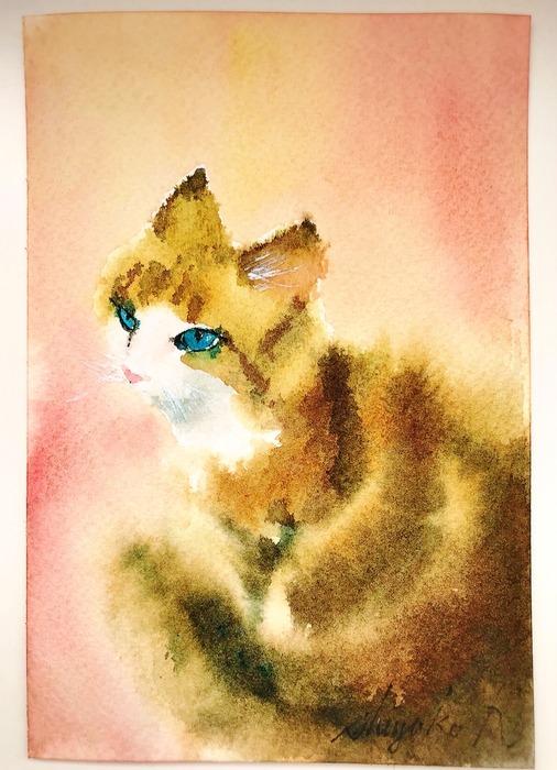 葉書de一日一枚 滲みで猫を描く(二匹目)「狸危機勃発」