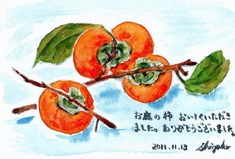 20111113(お礼)