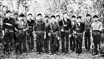 Viet Congs 5