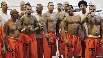 Latino gangs 3