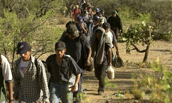 illegal immigrants 1