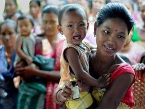Burmese 2