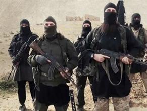 Muslim terrorists 23221