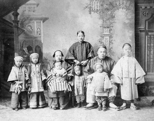 Chinese Immigrants to USA