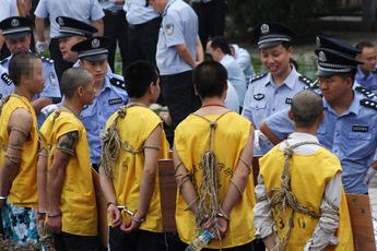 Chinese criminal gangs 2