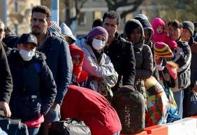 asylum seekers 556