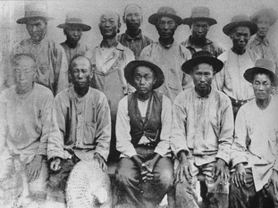 Chinese Immigrants 1