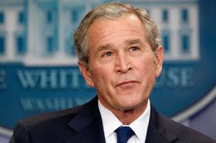 Bush 23