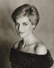 Princess Diana 21
