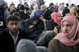 refugees 212