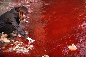 China water pollution 1