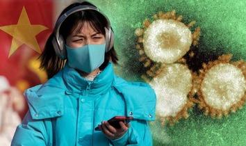 Chinese pandemic 1