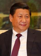 Chinese shu
