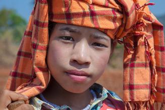 Burmese 5