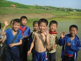 Korean kids 263