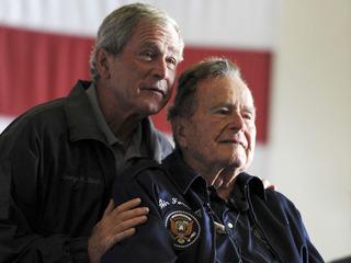 Bush 7