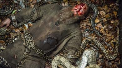 Vikings Ragnar death