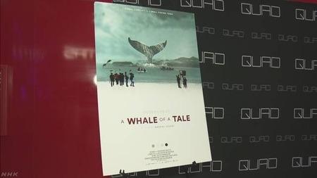 【捕鯨】日本人監督によるドキュメンタリー映画『A Whale of a Tale』、米国で一般公開…観客や欧米メディアから大きな反響