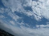 青空と奥羽大学