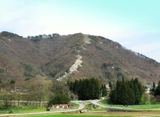 光城山森林公園 (2)