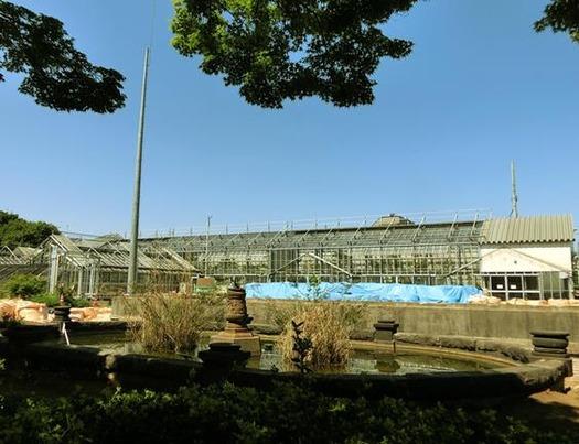 東京都文京区白山_小石川植物園 (9)