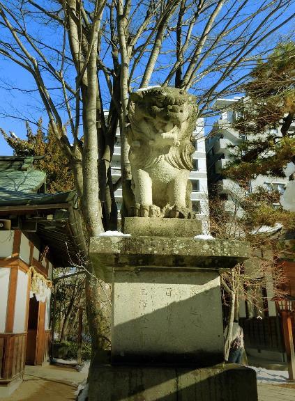 長野県松本市大手3-3-20_四柱神社_松本式狛犬 (2)
