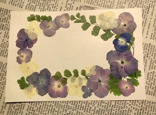 紫陽花の押し花フレーム (1)