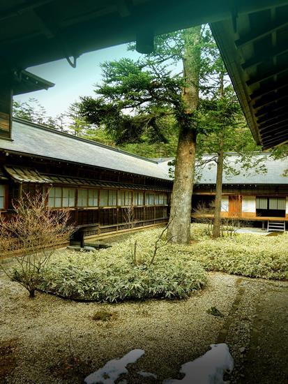 日光田母沢御用邸記念公園_庭園 (1)