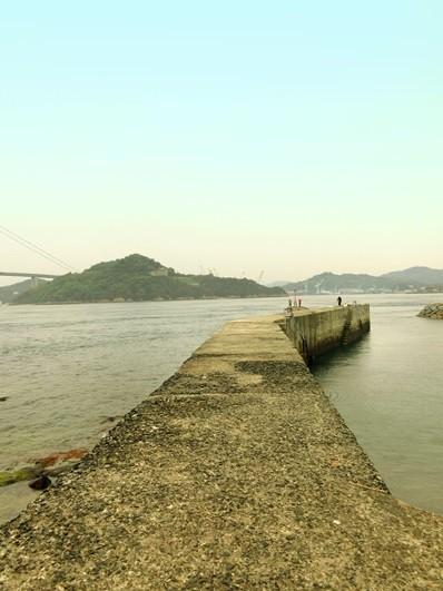 11海岸道路 (1)