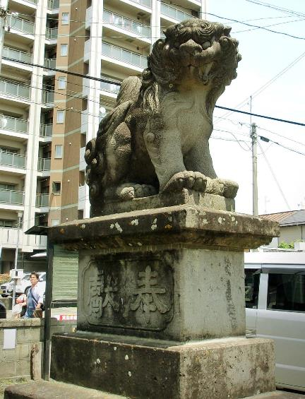 長野県松本市深志3丁目_富士浅間神社の狛犬 (6)