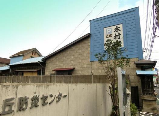 多磨霊園_木村家 (2)